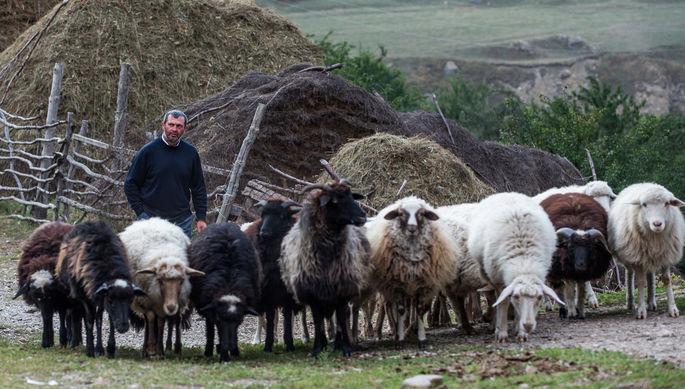 Уходят не туда: Северный Кавказ зря тратит деньги