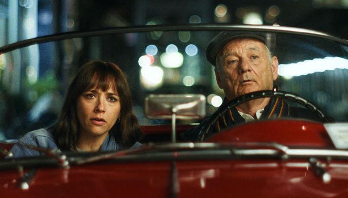 «Последняя капля» Софии Копполы: драма с Биллом Мюрреем о грустной дочке и задорном отце