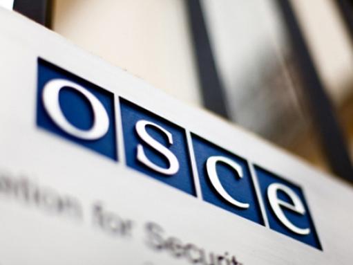 Российская делегация убедила ассамблею ОБСЕ не голосовать за резолюцию по правам человека в России