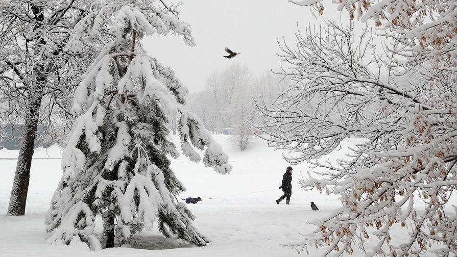 Выпавший в Москве снег установил новый рекорд