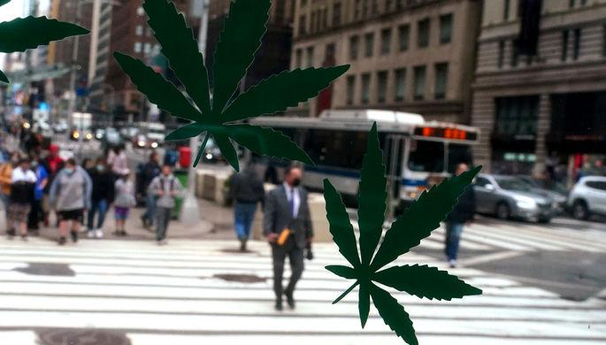 Теперь легально: как меняется статус марихуаны в США