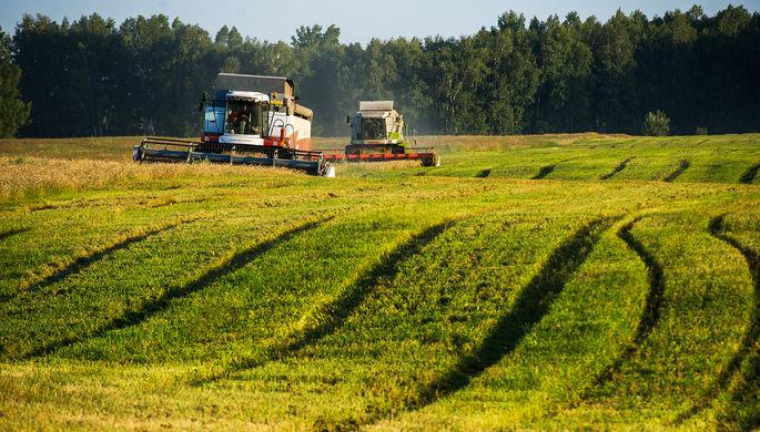 Стратегия успеха: как зеленая экономика спасет мир