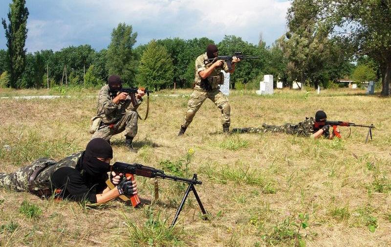 Подготовка бойцов украинских батальонов территориальной обороны
