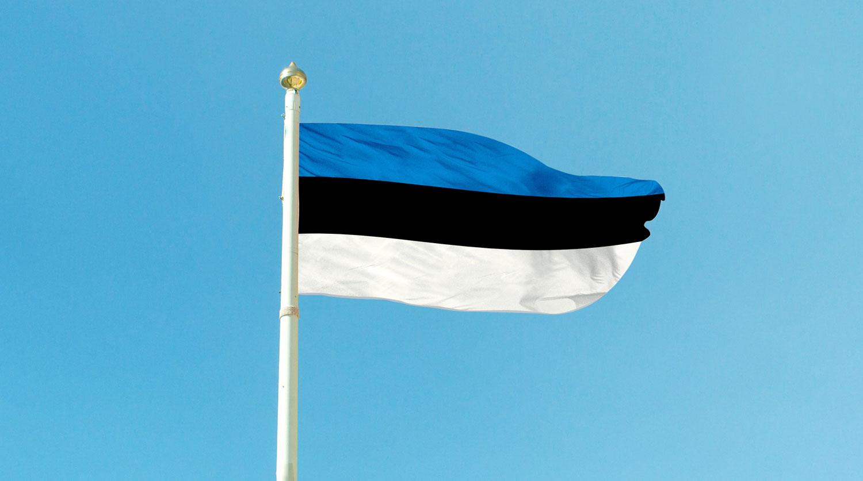 Предложение снять с России санкции прокомментировали в Эстонии