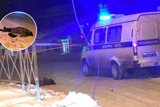 Беглый огонь: в Перми пьяный мужчина убил прохожую