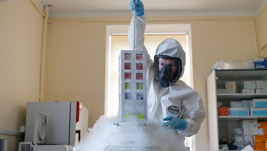 В России выявлено 10 535 новых случаев коронавируса