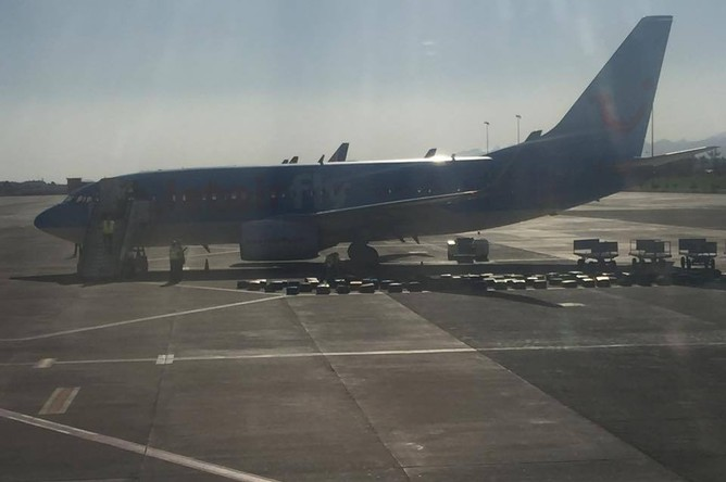 Бельгийская авиакомпания Jetairfly предпочла разложить багаж у самолета на асфальте для проверки. Его осмотрели две служебные собаки