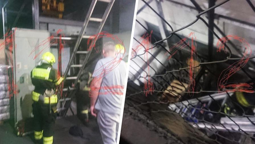 В Москве начата проверка после падения грузового лифта с людьми