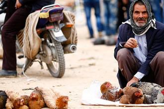 Падение Анкары: Турция вошла в рецессию