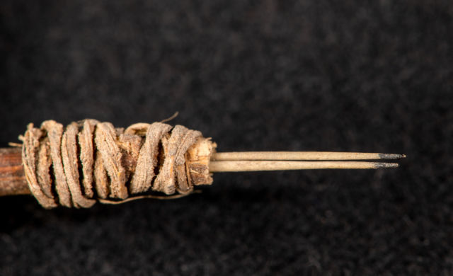 В Северной Америке найден древнейший инструмент татуировщика