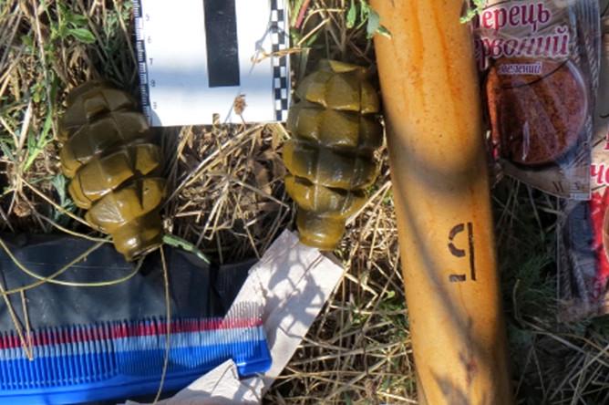 Гранаты, обнаруженные в ходе задержания украинских диверсантов сотрудниками ФСБ России в Крыму