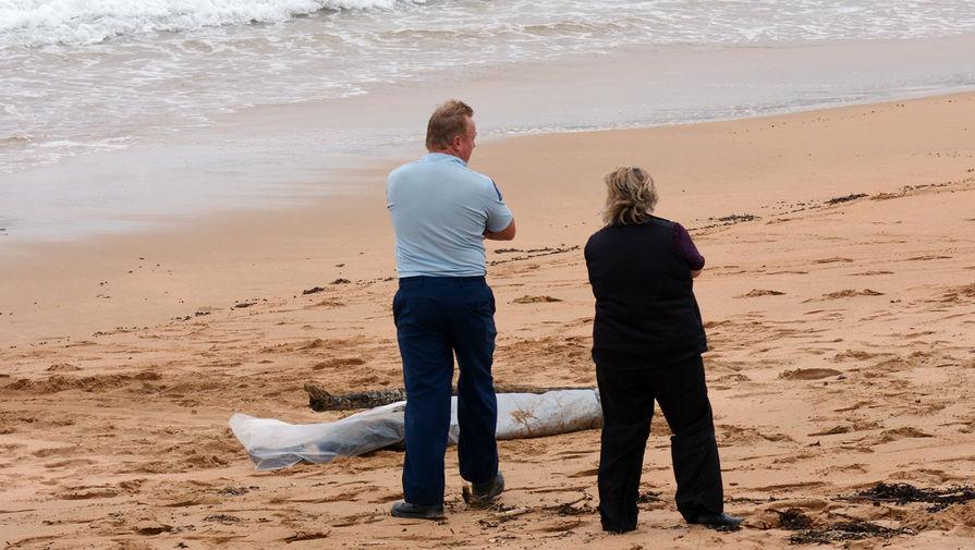 Тело российского пилота обнаружено на пляже в Майами