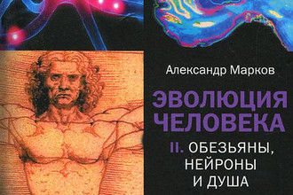 Главный приз премии «Просветитель» 2011 года в области естественных и точных наук получил биолог Александр Марков