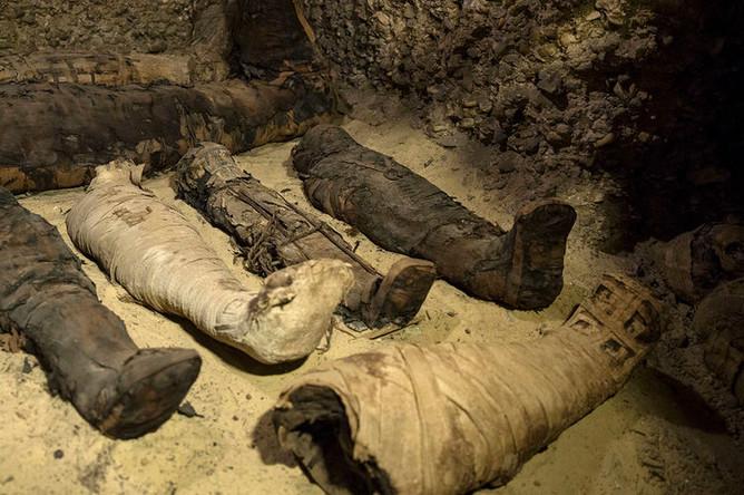 В Египте обнаружили гробницу с примерно 40 мумиями, 2 февраля 2019 года