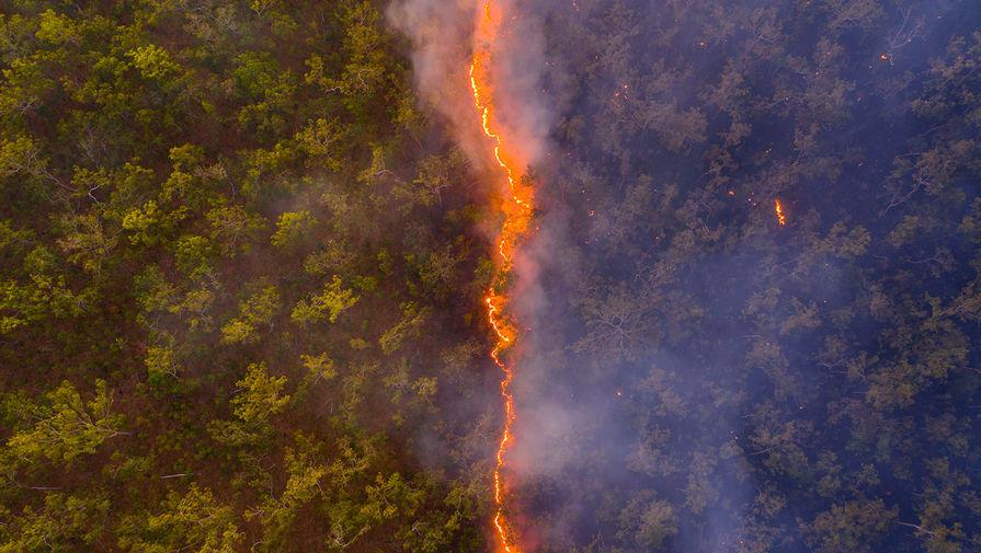 «Лесной пожар»