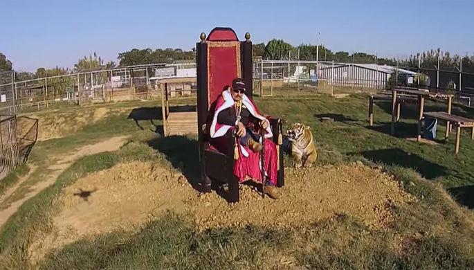 «Король тигров»: сериал Netflix поможет раскрыть преступление