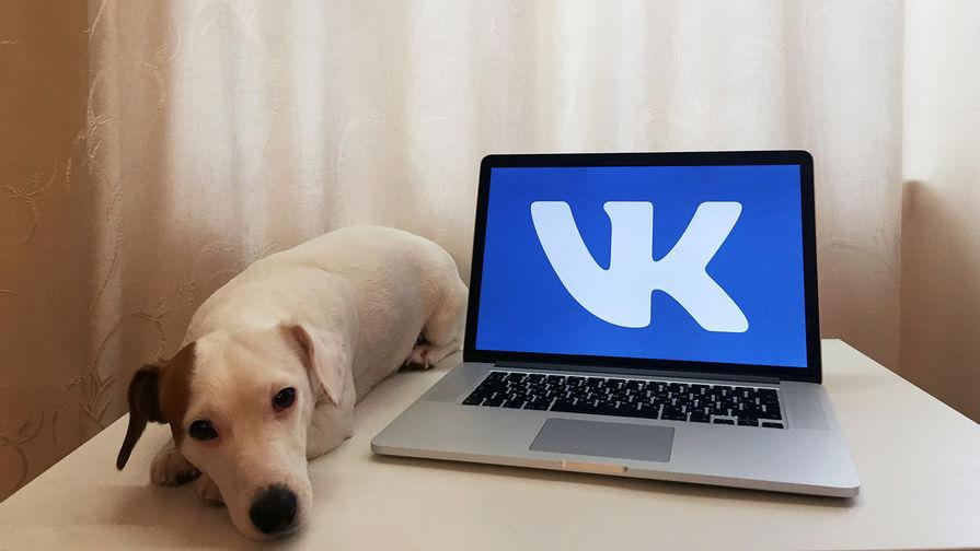 Во «ВКонтакте» объяснили причину введения дизлайков для комментариев