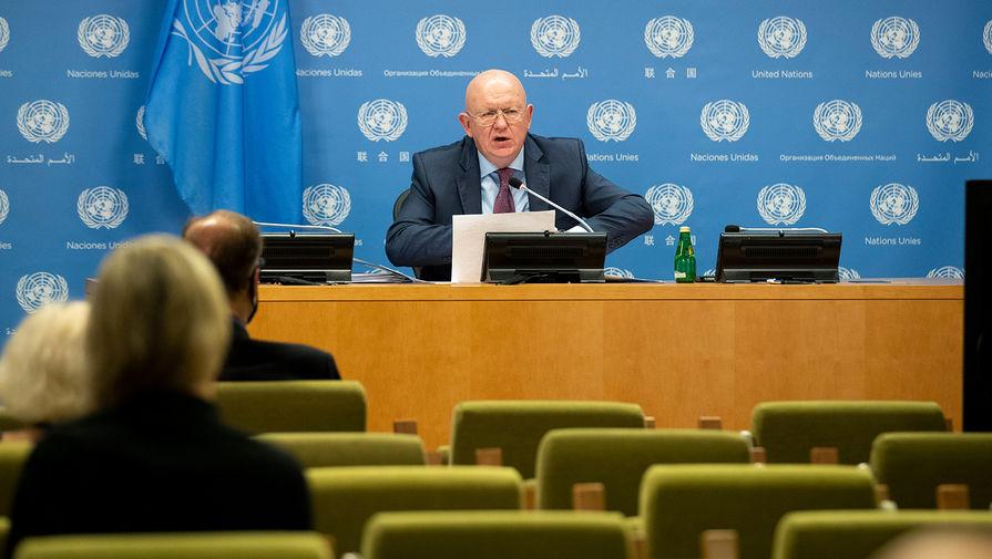 Шесть западных стран не дали экс-главе ОЗХО выступить в СБ ООН