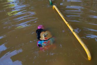 Детская игрушка в затопленном в результате наводнения городе Обреновац
