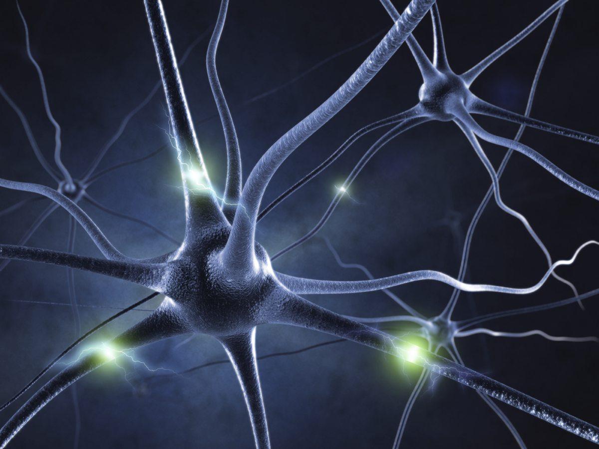 Мозговые волны каждого человека индивидуальны