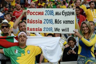 Болельщики из Бразилии и других стран могут не доехать до Калининграда и Екатеринбурга