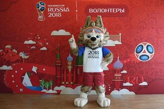 На период проведения Кубка конфедераций — 2017 и чемпионата мира по футболу — 2018 в России будут усилены меры безопасности