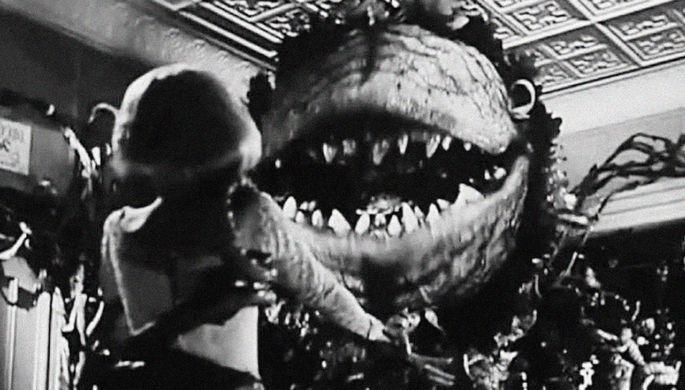 Кадр из фильма Роджера Кормана «Маленький магазинчик ужасов» (1960)