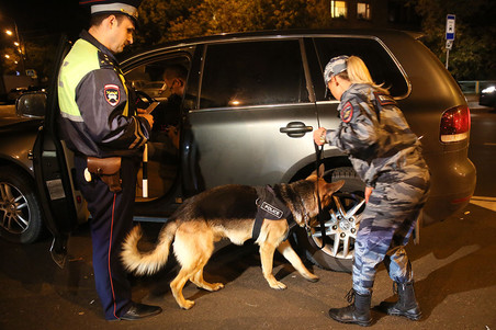 Полицейские за ночь изъяли у водителей в Москве 300 бит и около 200 единиц холодного оружия