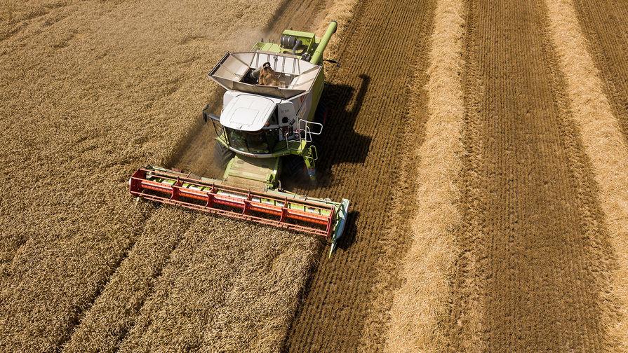 Правительство выделит 2,47 млрд рублей на развитие сельских территорий России