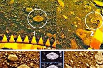 Фрагменты панорамы «Венеры-13». Кружками выделены объекты, напоминающие складчатую шапку земных грибов (1) и древесный гриб (2). Результаты обработки показаны на кадрах 3-5. Размеры объекта 1 — около 8 см, объекта 2 — около 6 см