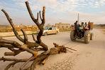Гражданская война вдвое уменьшила запасы воды и орошаемые земли Сирии