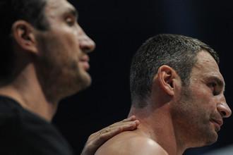 Владимир и Виталий Кличко — одни из главных лиц профессионального бокса в 2013 году