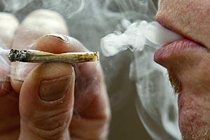 как правильно ухаживать за марихуаной