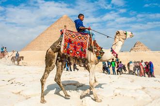 Египет взлетит в 2017 году