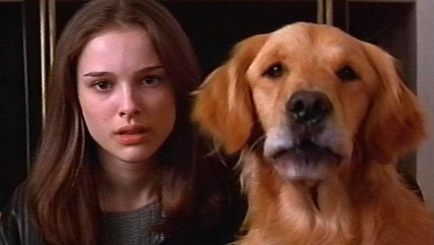 Портман отказалась от мяса в 9 лет и с тех пор пропагандирует веганство. В 2018 году актриса спродюсировала документальный фильм о вреде ферм и промышленного хозяйства «Поедание животных». Кадр из фильма «Марс атакует!» (1996)