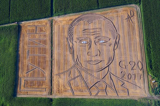 Портрет президента России Владимира Путина на поле в итальянской коммуне Кастаньяро, июль 2017 года. Автор посвятил портрет предстоящему саммиту G20