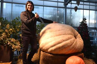 Самая большая тыква в России весом в 400 кг в «Аптекарском огороде» в Москве, октябрь 2017 года