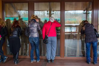 Люди заглядывают в окна оставленной резиденции президента Украины Виктора Януковича «Межигорье» под Киевом, февраль 2014 года