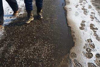 Тротуар, посыпанный противогололедным реагентом после сильного снегопада в Москве