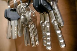 Сотрудники полиции выявили хищение более 150 муниципальных квартир в Московском регионе