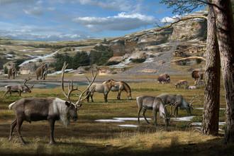 Пейзаж эпохи плейстоцена с мамонтами, лошадьми, оленями и овцебыками