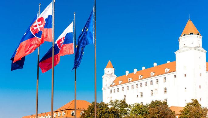 Снести запреты: Словакия снимет антироссийские санкции?