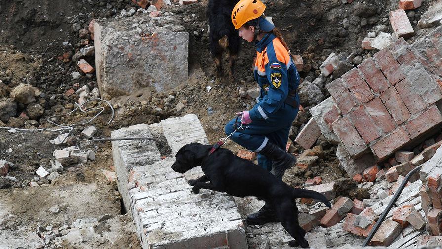 Сотрудник МЧС РФ с собакой на месте завалов, где обрушилось перекрытие в строящемся здании в Новосибирске, 28 августа 2019 года
