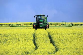 ЕС стал крупнейшим поставщиком продовольствия в мире