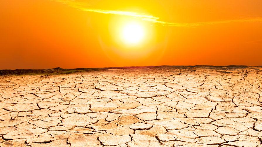 Пугающий прогноз: 5 лет аномальной жары