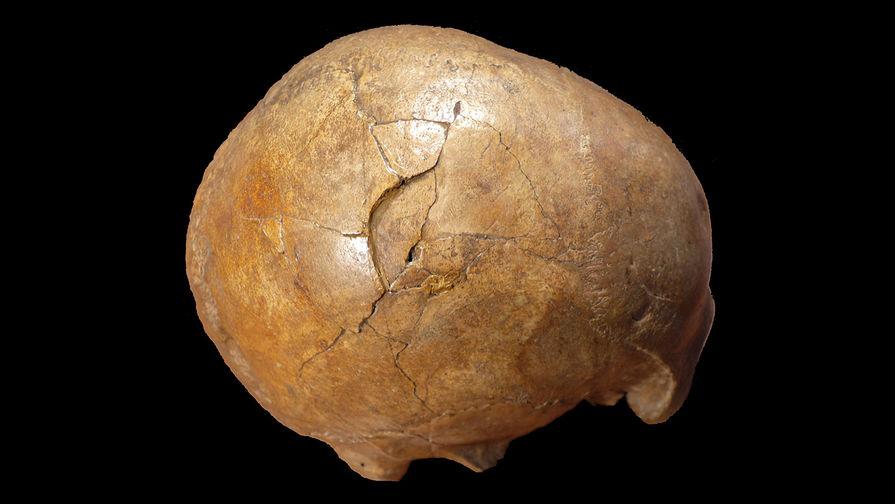 В Эквадоре нашли останки детей в «шлемах» из черепов других детей
