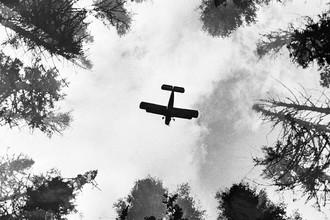 Самолет Ан-2 над тайгой, 1972 год