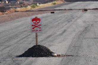 Дорога из Пальмиры в город Арак в Сирии