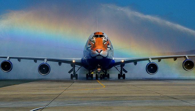 Самолет Boeing 747 авиакомпании «Трансаэро» с изображением амурского тигра, сентябрь 2015 года