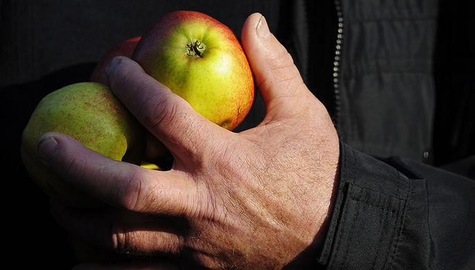 Запретный плод: Минск попался на санкционных яблоках